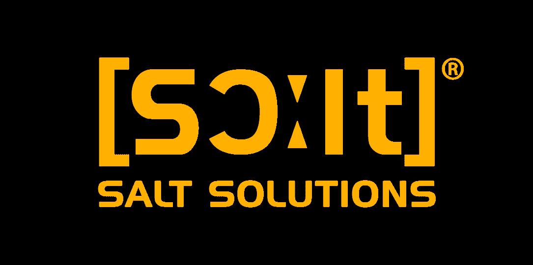 Logo_SALT_SOLUTIONS_RGB_mit Schutzzone_transparent_klein